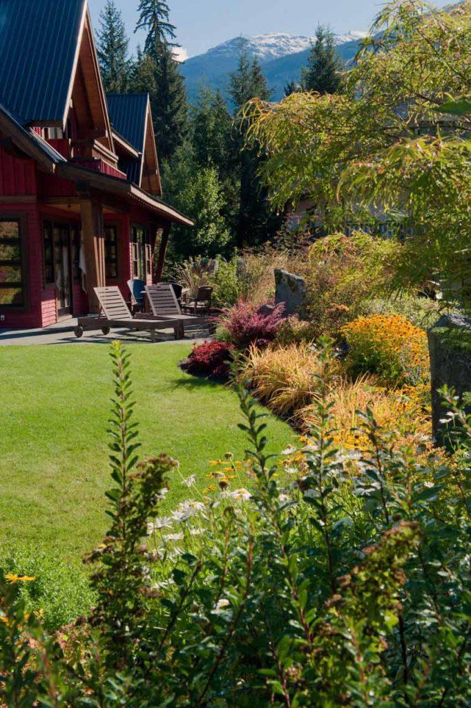 Backyard garden and patio